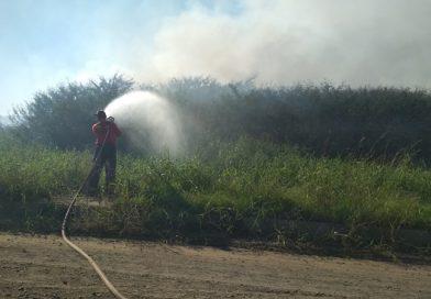 Bombeiros monitoram incêndio em mato no bairro Agreste