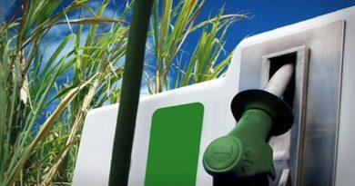 Rio Grande do Sul quer produzir etanol com arroz, batatas e trigo